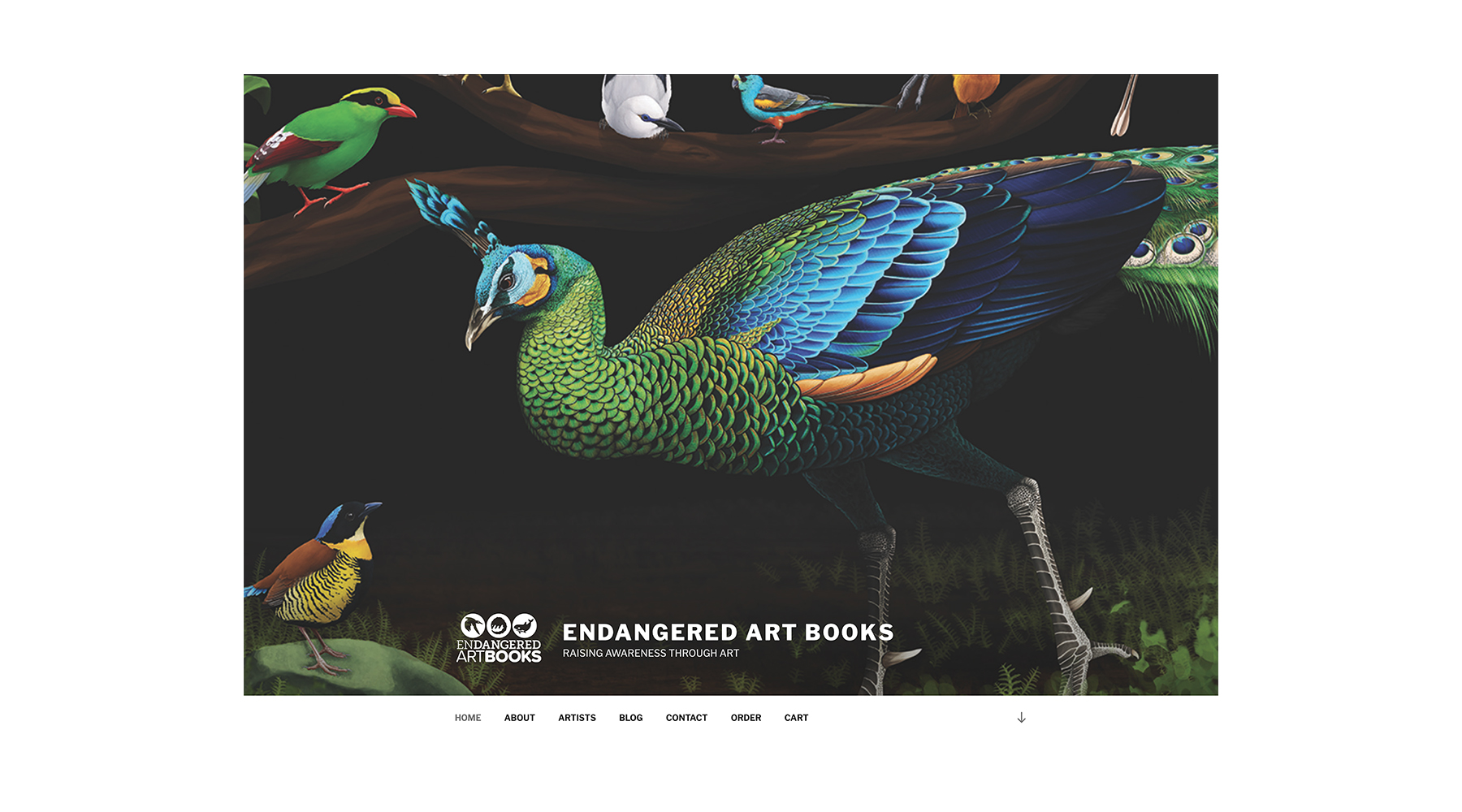 Endangered Art Books Website