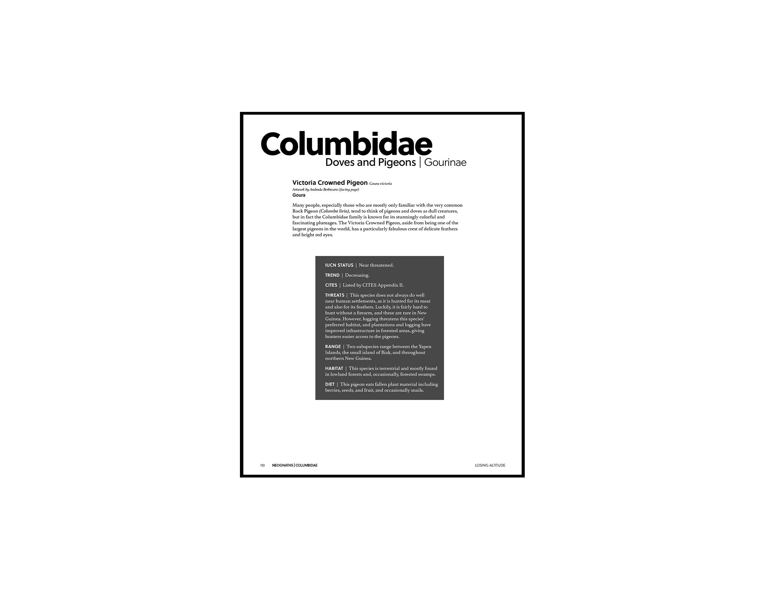 Losing Altitude Page 110
