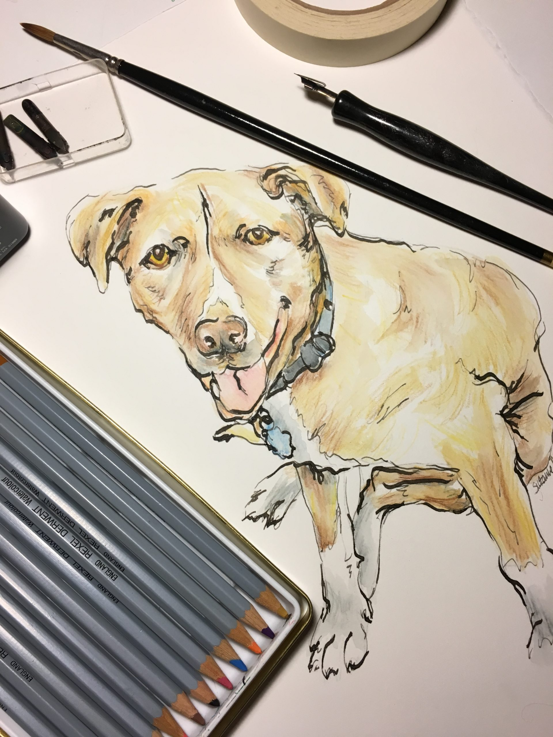 Watercolor Pencil, Pen-and-Ink Pet Portrait